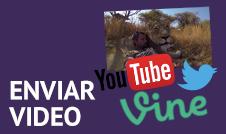 Envíanos un vídeo que hayas visto en youtube